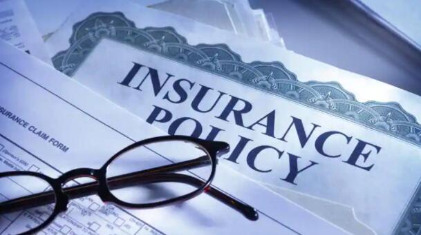 公司在小规模的保险报价中看到了大型企业