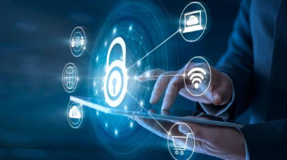 利基网络安全参与者仍然是一项可靠的长期投资