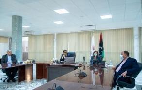 利比亚的国家电信部门寻求与美国科技公司的合作向外国直接投资开放部门