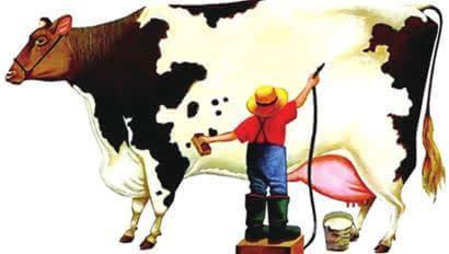 ACCC授权昆士兰奶农组织实施公平乳业许可计划