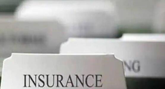 在FDI上限中加息以帮助保险公司偿债