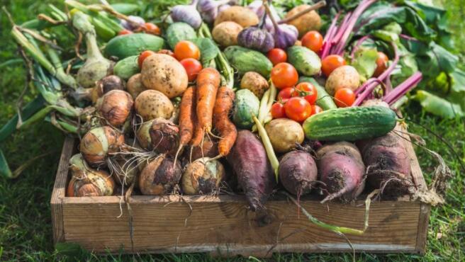 农业食品中小企业对前景持乐观态度 但成本通胀正在影响